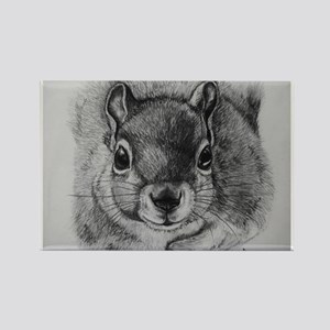 Squrrel Sketch Rectangle Magnet