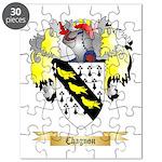 Chagnon Puzzle