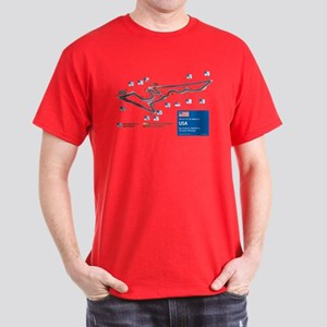 Formula 1 - Circuit of the Americas, USA T-Shirt