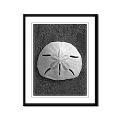 Sand Dollar (B&W) Framed Panel Print
