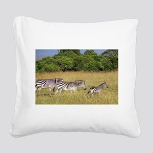 Africa Zebra Herd Square Canvas Pillow