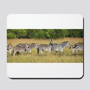 Dazzle of Zebras Mousepad