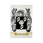Celon Rectangle Magnet (100 pack)