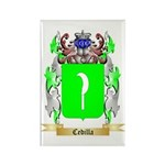 Cedilla Rectangle Magnet (100 pack)
