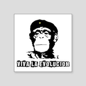 Human Evolution Sticker
