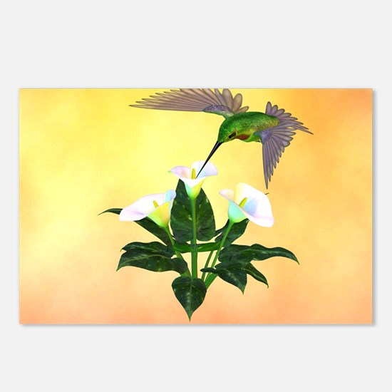 Hummingbird on Lily Postcards (Package of 8)