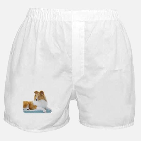 Shetland Sheepdog AF113D-030 Boxer Shorts