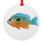 Longear Sunfish fish 2 Ornament