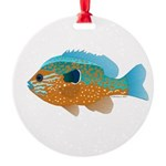 Longear Sunfish fish 2 Ornament
