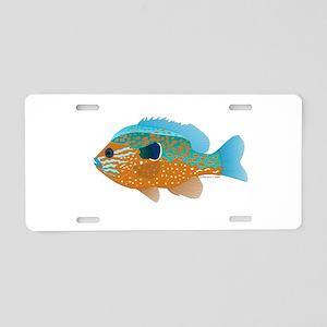 Longear Sunfish fish 2 Aluminum License Plate