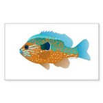 Longear Sunfish fish 2 Sticker