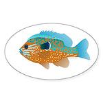 Longear Sunfish fish 2 Sticker