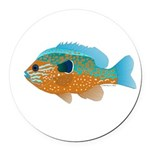 Longear Sunfish fish 2 Round Car Magnet