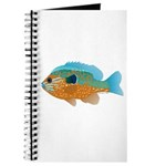 Longear Sunfish fish 2 Journal