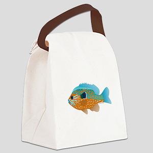 Longear Sunfish fish 2 Canvas Lunch Bag
