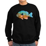 Longear Sunfish fish 2 Sweatshirt