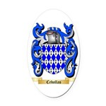 Cebollas Oval Car Magnet