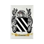 Cawstan Rectangle Magnet (10 pack)