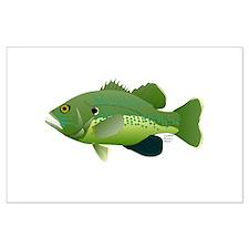 Green Sunfish fish v2 Posters