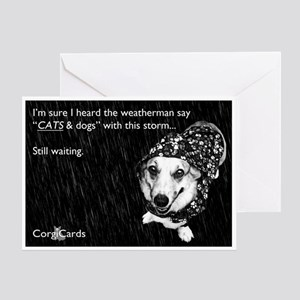Where are the cats? Greeting Card