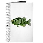 Northern Rock Bass v2 Journal