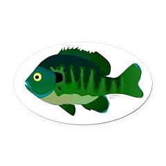 Bluegill sunfish v2 Oval Car Magnet