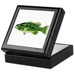 Spotted Bass (Black Bass Family) Keepsake Box
