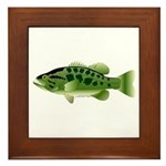 Spotted Bass (Black Bass Family) Framed Tile