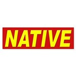 Native Pride Bumper Sticker