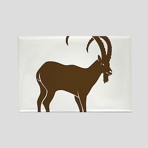 ibex capricorn steinbock mountain goat sheep alps