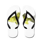 Yellow Bass fish 2 Flip Flops