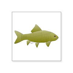 Bigmouth Buffalo fish Sticker