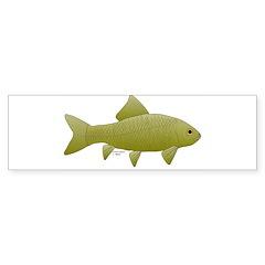 Bigmouth Buffalo fish Bumper Bumper Sticker