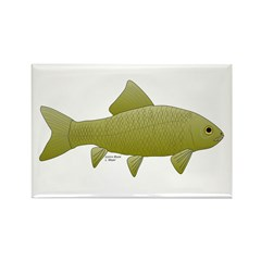 Bigmouth Buffalo fish Rectangle Magnet (10 pack)