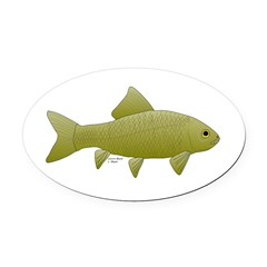 Bigmouth Buffalo fish Oval Car Magnet