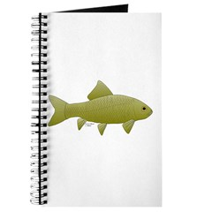 Bigmouth Buffalo fish Journal