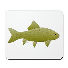 Bigmouth Buffalo fish Mousepad
