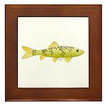 Black Redhorse fish Framed Tile