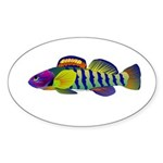 orangethroat darter Sticker