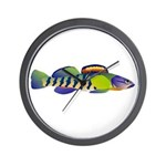 orangethroat darter Wall Clock
