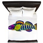 orangethroat darter King Duvet