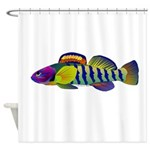 orangethroat darter Shower Curtain