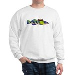 orangethroat darter Sweatshirt