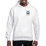 Cattarini Hooded Sweatshirt