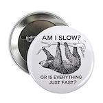 Sloth Am I Slow? 2.25