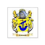 Cattanach Square Sticker 3