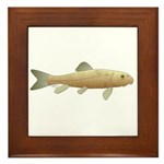 White Sucker fish 2 Framed Tile