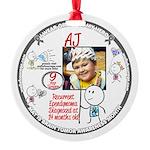 2013 Round Ornament