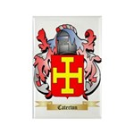 Caterton Rectangle Magnet (100 pack)