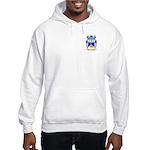 Cataruzza Hooded Sweatshirt